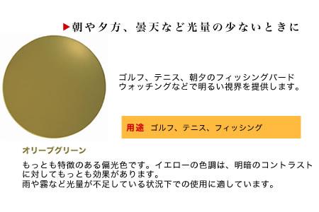 コダック オリーブグリーン.jpg